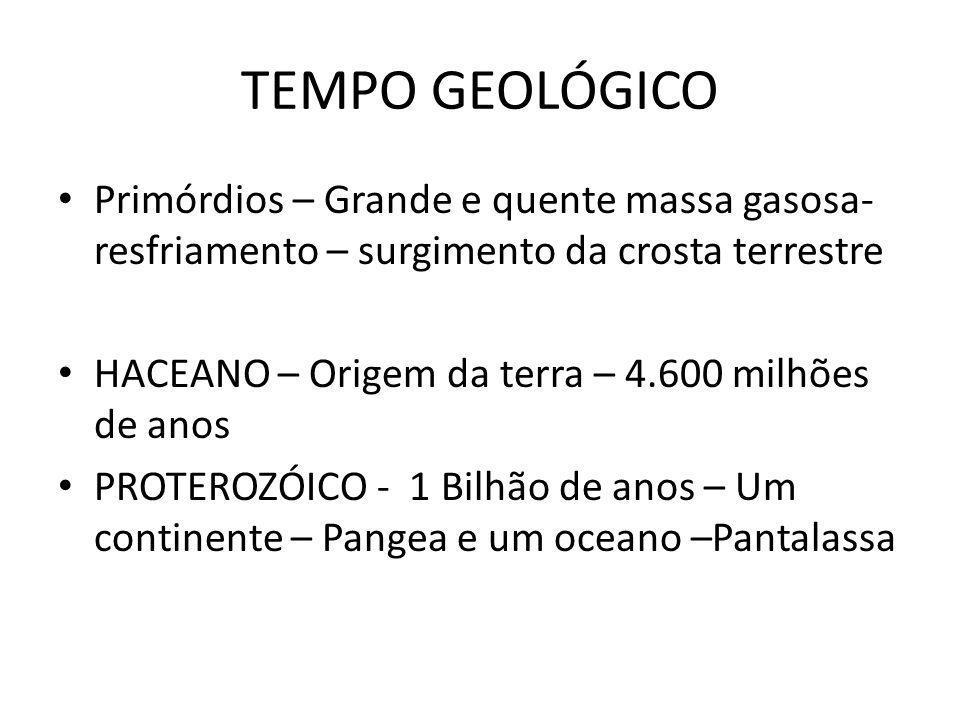 TEMPO GEOLÓGICO Primórdios – Grande e quente massa gasosa- resfriamento – surgimento da crosta terrestre HACEANO – Origem da terra – 4.600 milhões de anos PROTEROZÓICO - 1 Bilhão de anos – Um continente – Pangea e um oceano –Pantalassa