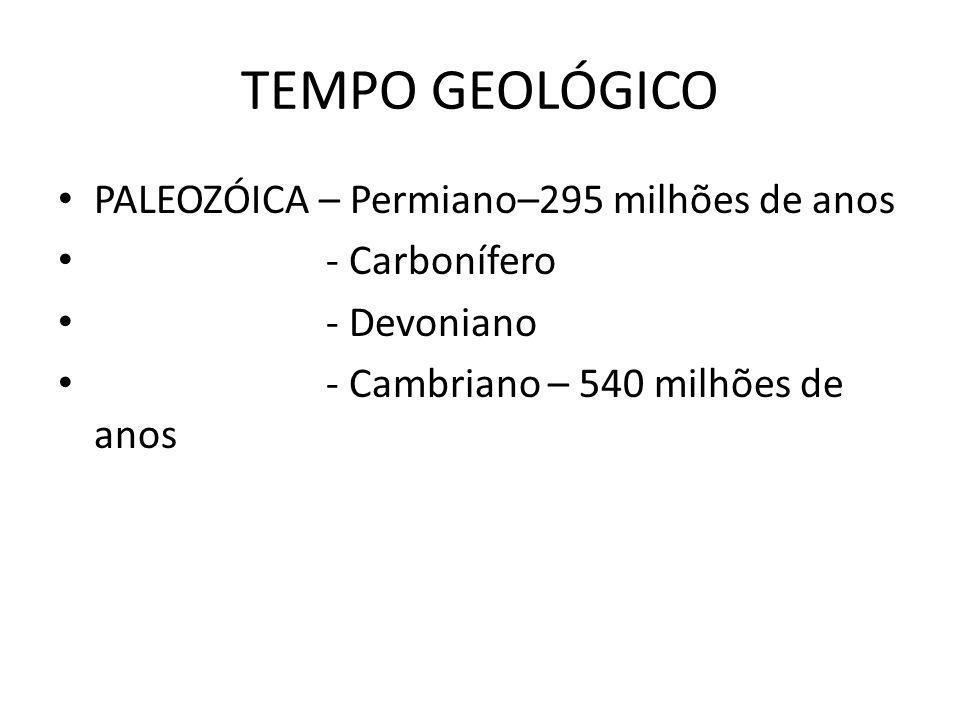 TEMPO GEOLÓGICO MESOZÓICA – Cretáceo – 135 milhões de anos (início da abertura do Oceano Atlântico e Índico) - Jurássico – 203 milhões de anos - Triássico – 250 milhões de anos