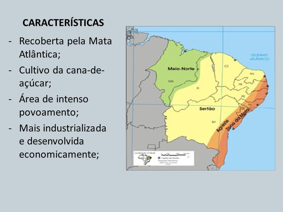 CARACTERÍSTICAS -Recoberta pela Mata Atlântica; -Cultivo da cana-de- açúcar; -Área de intenso povoamento; -Mais industrializada e desenvolvida economi