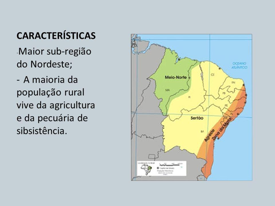 CARACTERÍSTICAS - Maior sub-região do Nordeste; - A maioria da população rural vive da agricultura e da pecuária de sibsistência.