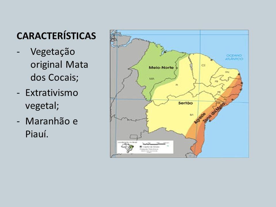 CARACTERÍSTICAS -Vegetação original Mata dos Cocais; -Extrativismo vegetal; -Maranhão e Piauí.