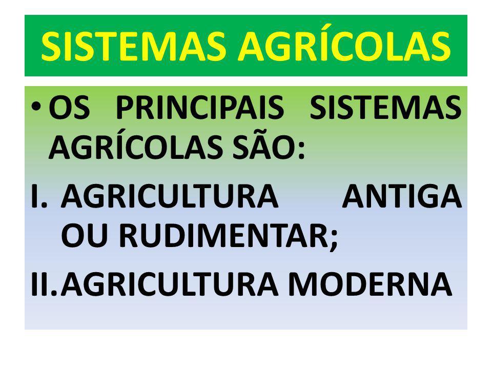 AGRICUTURA DOS PAÍSES RICOS II O MODELO AGRÍCOLA DOS EUA.