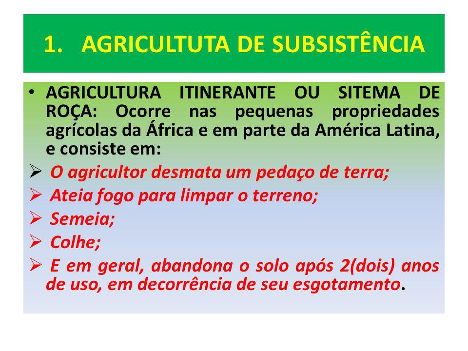 1.AGRICULTUTA DE SUBSISTÊNCIA AGRICULTURA ITINERANTE OU SITEMA DE ROÇA: Ocorre nas pequenas propriedades agrícolas da África e em parte da América Lat
