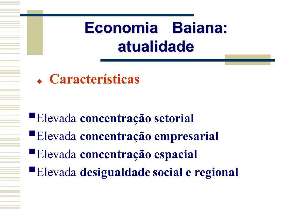 Características Elevada concentração setorial Elevada concentração empresarial Elevada concentração espacial Elevada desigualdade social e regional Ec