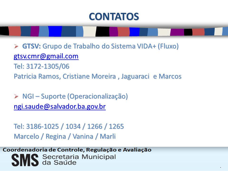 CONTATOS GTSV: Grupo de Trabalho do Sistema VIDA+ (Fluxo) GTSV: Grupo de Trabalho do Sistema VIDA+ (Fluxo) gtsv.cmr@gmail.com tsv.cmr@gmail.comtsv.cmr