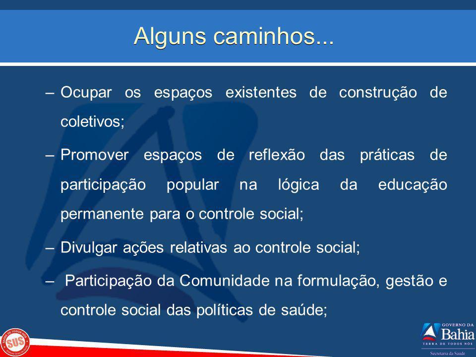 Alguns caminhos... –Ocupar os espaços existentes de construção de coletivos; –Promover espaços de reflexão das práticas de participação popular na lóg