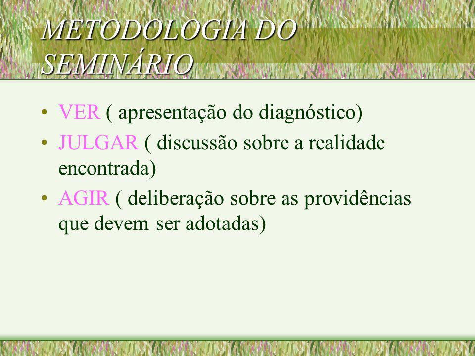 SEMINÁRIO (CONT.) Com base no princípio aceito elaborar as DIRETRIZES DE AÇÃO, que serão testadas na prática.