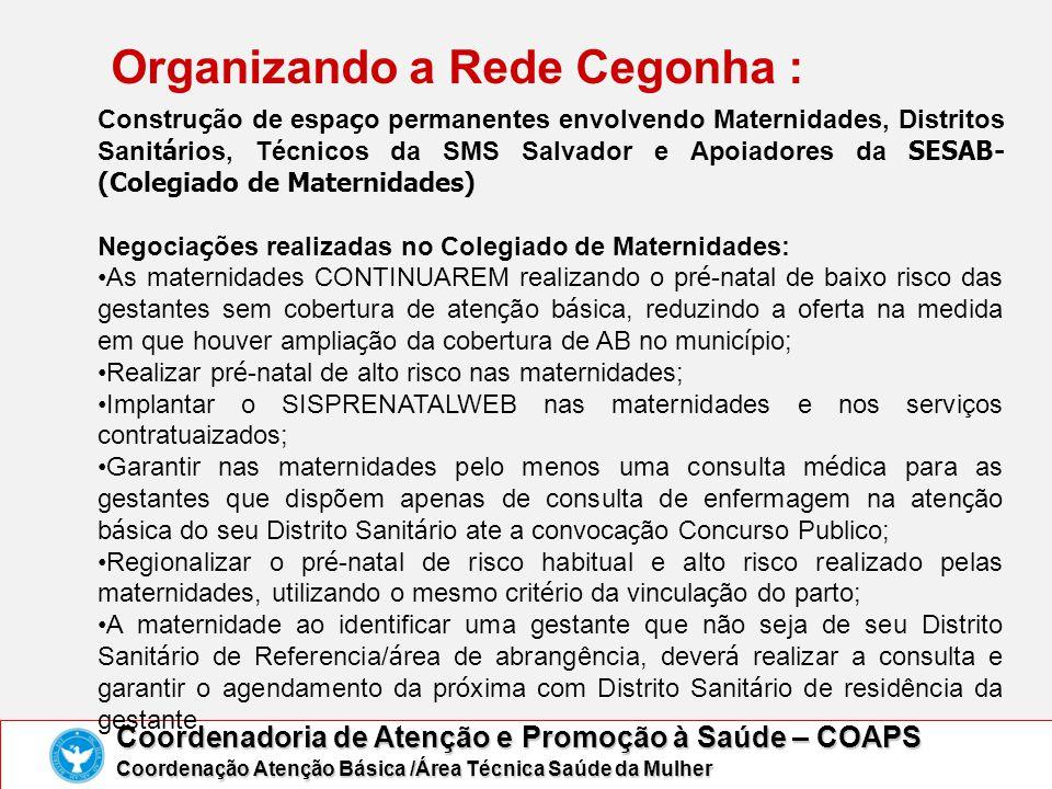 Organizando a Rede Cegonha : Coordenadoria de Atenção e Promoção à Saúde – COAPS Coordenação Atenção Básica /Área Técnica Saúde da Mulher Constru ç ão