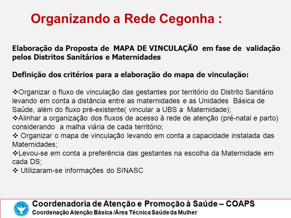 Organizando a Rede Cegonha : Coordenadoria de Atenção e Promoção à Saúde – COAPS Coordenação Atenção Básica /Área Técnica Saúde da Mulher Elaboração d