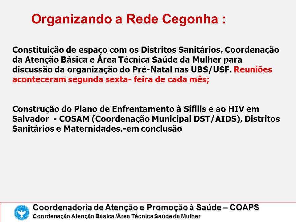 Organizando a Rede Cegonha : Coordenadoria de Atenção e Promoção à Saúde – COAPS Coordenação Atenção Básica /Área Técnica Saúde da Mulher Constituição