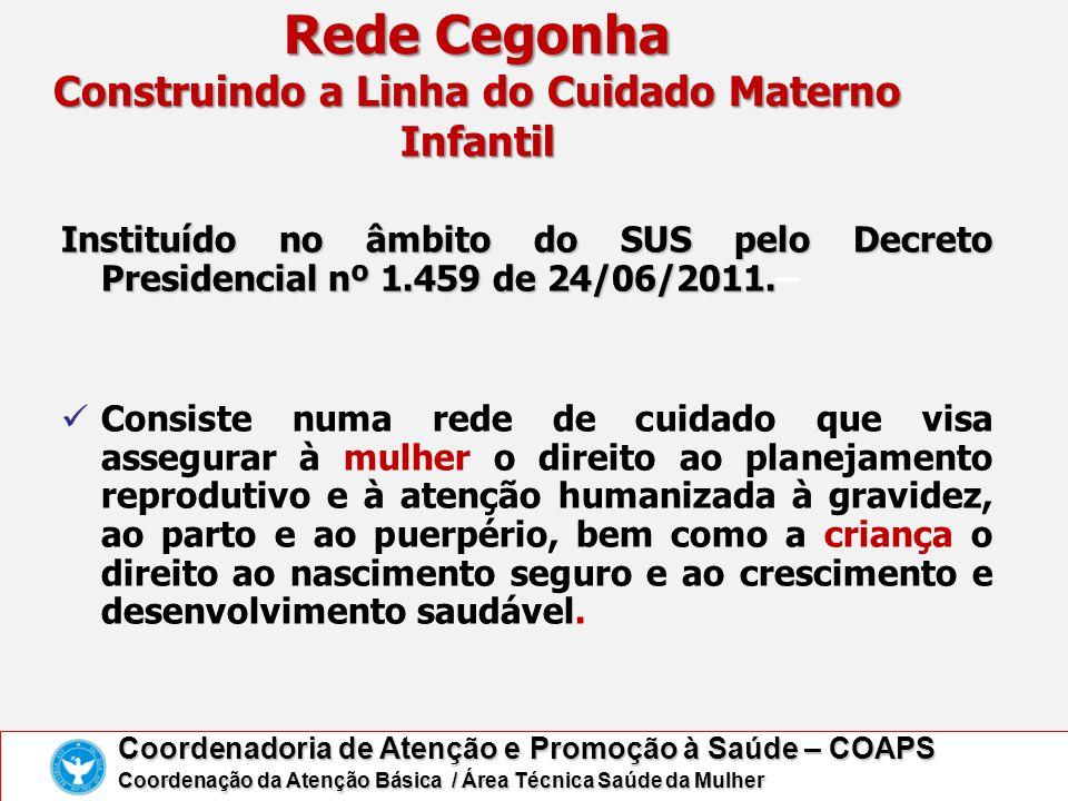 Rede Cegonha Construindo a Linha do Cuidado Materno Infantil Instituído no âmbito do SUS pelo Decreto Presidencial nº 1.459 de 24/06/2011. Instituído