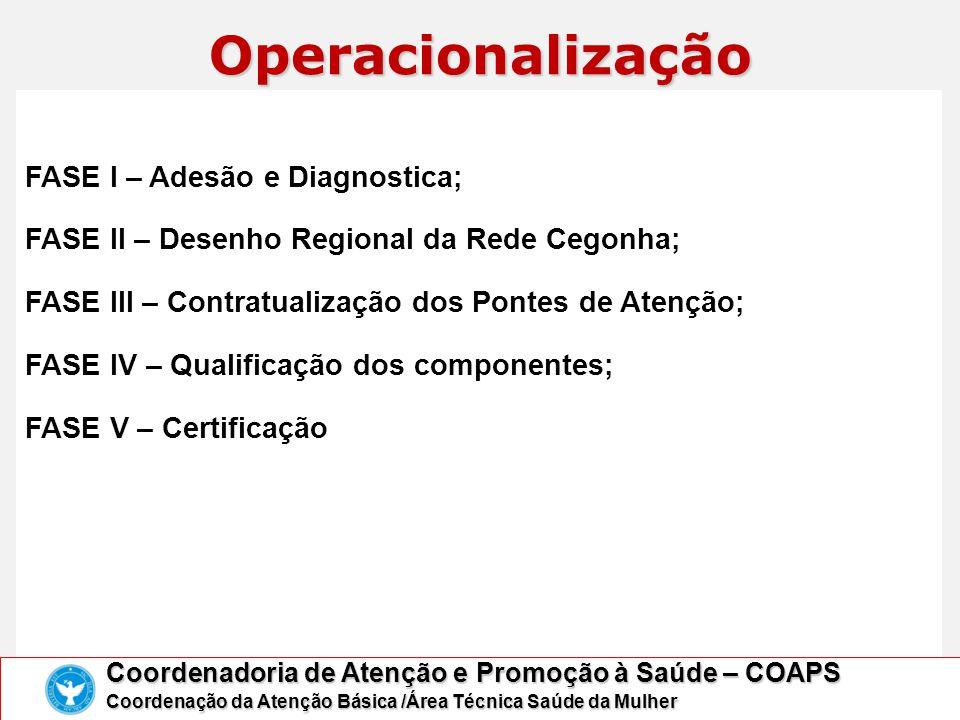 FASE I – Adesão e Diagnostica; FASE II – Desenho Regional da Rede Cegonha; FASE III – Contratualização dos Pontes de Atenção; FASE IV – Qualificação d