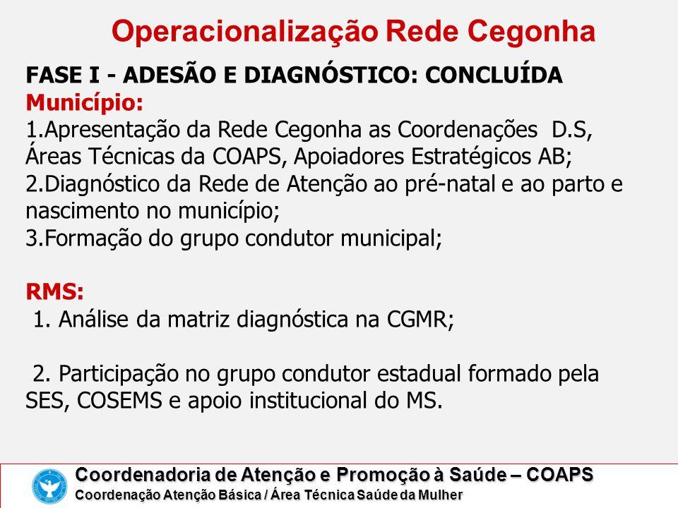 Grupo Condutor Estadual Rede Cegonha Resolução CIB/BA nº.