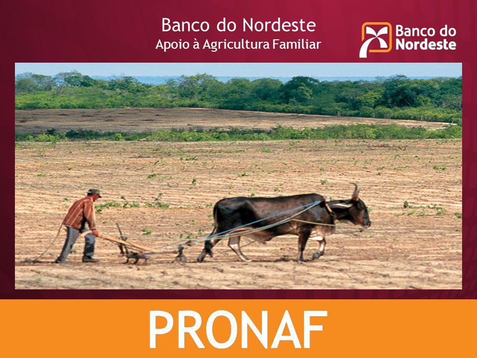 Banco do Nordeste Apoio à Agricultura Familiar