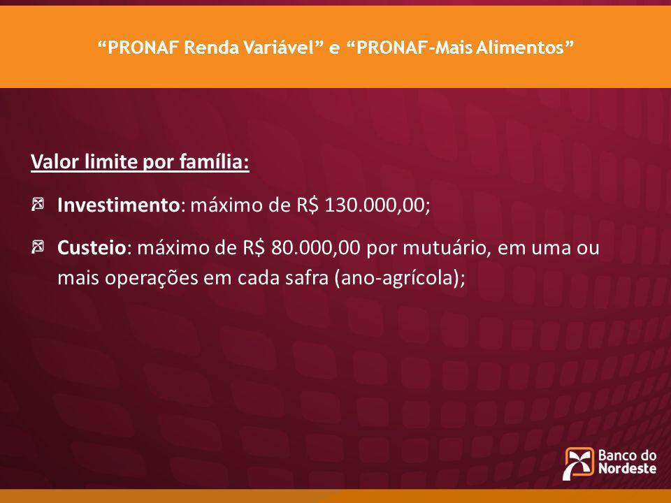 Valor limite por família: Investimento: máximo de R$ 130.000,00; Custeio: máximo de R$ 80.000,00 por mutuário, em uma ou mais operações em cada safra