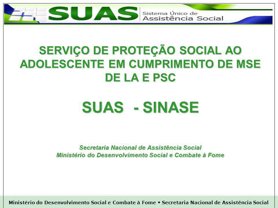 Ministério do Desenvolvimento Social e Combate à Fome Secretaria Nacional de Assistência Social SUAS: RECONSTRUINDO A HISTÓRIA DA ASSISTÊNCIA SOCIAL NO BRAISL A ASSISTÊNCIA SOCIAL COMO POLÍTICA PÚBLICA; DEFINIÇÃO DE COMPETÊNCIAS DA ASSISTÊNCIA SOCIAL; AFIANÇAR SEGURANÇAS (ACOLHIDA, RENDA, CONVÍVIO, AUTONOMIA, SOBREVIVÊNCIA A RISCOS); ACESSO A DIREITOS; CONTEXTUALIZAÇÃO DA REALIDADE DE VIDA DE INDIVÍDUOS E FAMÍLIAS; TERRITORIALIZAÇÃO INCOMPLETUDE INSTITUCIONAL E FORTALECIMENTO DA INTERSETORIALIDADE;