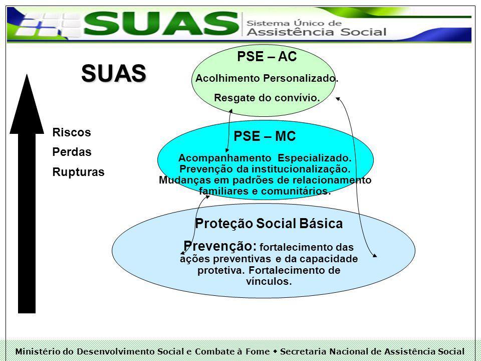 Ministério do Desenvolvimento Social e Combate à Fome Secretaria Nacional de Assistência Social SUAS Riscos Perdas Rupturas PSE – AC Acolhimento Personalizado.