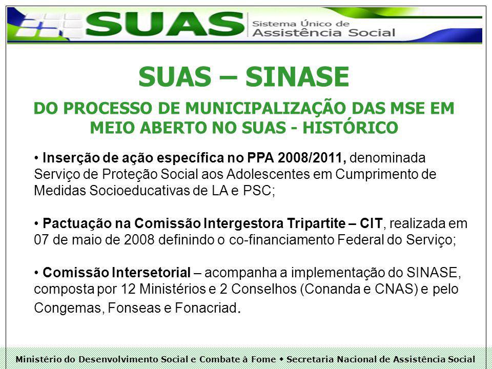 Ministério do Desenvolvimento Social e Combate à Fome Secretaria Nacional de Assistência Social OBRIGADO PELA ATENÇÃO.