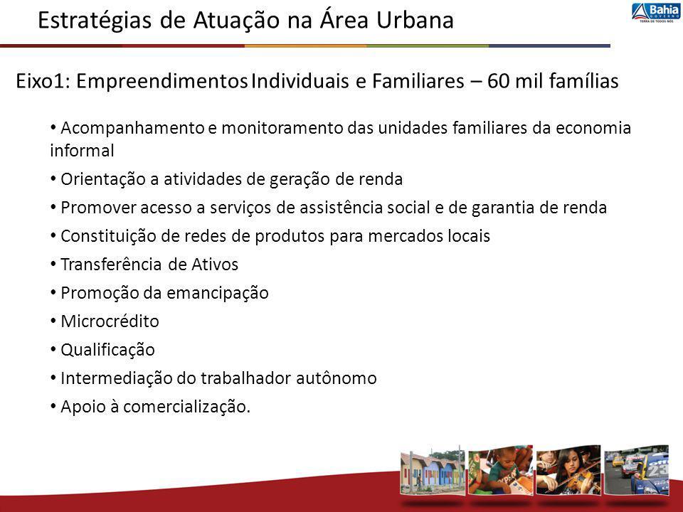 Eixo1: Empreendimentos Individuais e Familiares – 60 mil famílias Acompanhamento e monitoramento das unidades familiares da economia informal Orientaç