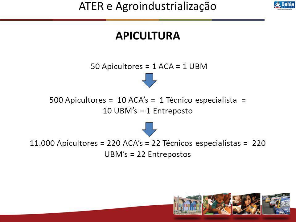 ATER e Agroindustrialização APICULTURA 50 Apicultores = 1 ACA = 1 UBM 500 Apicultores = 10 ACAs = 1 Técnico especialista = 10 UBMs = 1 Entreposto 11.0