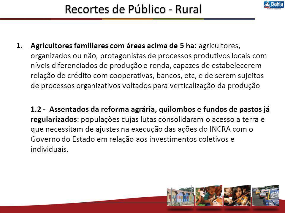 1.Agricultores familiares com áreas acima de 5 ha: agricultores, organizados ou não, protagonistas de processos produtivos locais com níveis diferenci
