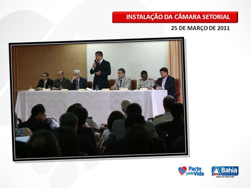 INSTALAÇÃO DA CÂMARA SETORIAL 25 DE MARÇO DE 2011