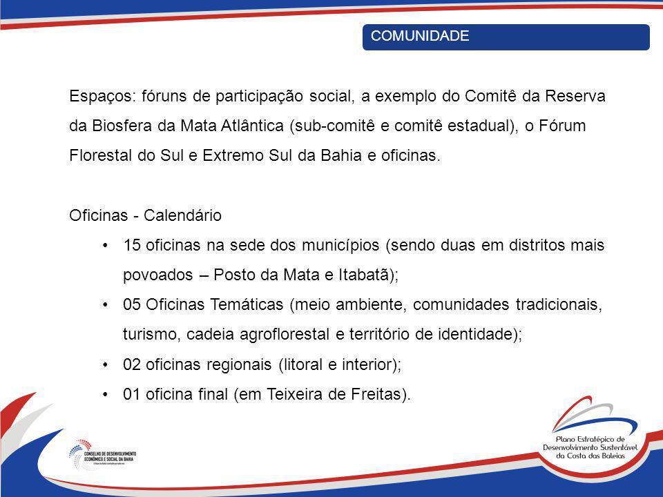 COMUNIDADE Espaços: fóruns de participação social, a exemplo do Comitê da Reserva da Biosfera da Mata Atlântica (sub-comitê e comitê estadual), o Fóru
