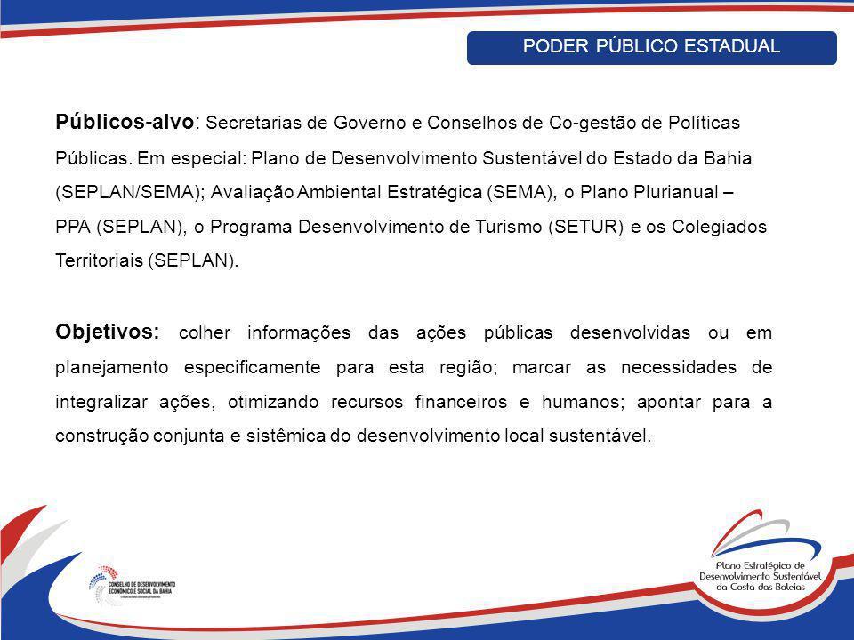 PODER PÚBLICO ESTADUAL Públicos-alvo: Secretarias de Governo e Conselhos de Co-gestão de Políticas Públicas. Em especial: Plano de Desenvolvimento Sus