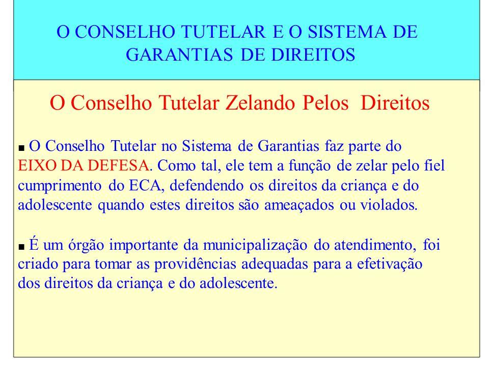 O CONSELHO TUTELAR E O SISTEMA DE GARANTIAS DE DIREITOS O Conselho Tutelar Zelando Pelos Direitos O Conselho Tutelar no Sistema de Garantias faz parte