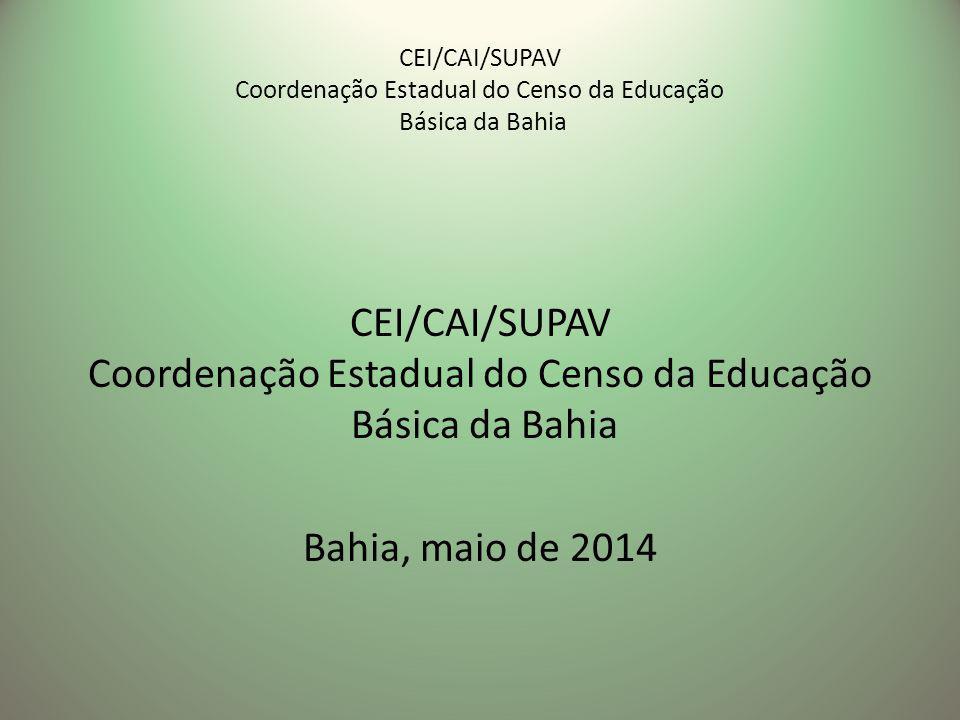 CEI/CAI/SUPAV Coordenação Estadual do Censo da Educação Básica da Bahia Bahia, maio de 2014