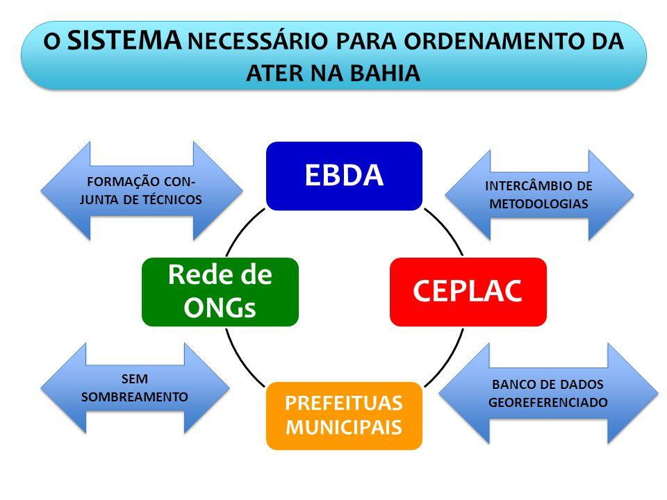 O SISTEMA NECESSÁRIO PARA ORDENAMENTO DA ATER NA BAHIA EBDACEPLAC PREFEITUAS MUNICIPAIS Rede de ONGs SEM SOMBREAMENTO BANCO DE DADOS GEOREFERENCIADO FORMAÇÃO CON- JUNTA DE TÉCNICOS INTERCÂMBIO DE METODOLOGIAS