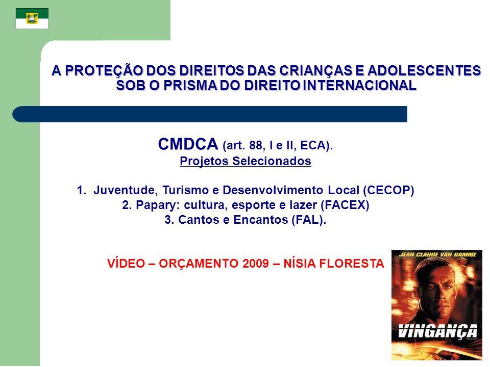 A PROTEÇÃO DOS DIREITOS DAS CRIANÇAS E ADOLESCENTES SOB O PRISMA DO DIREITO INTERNACIONAL CMDCA (art. 88, I e II, ECA). Projetos Selecionados 1. Juven