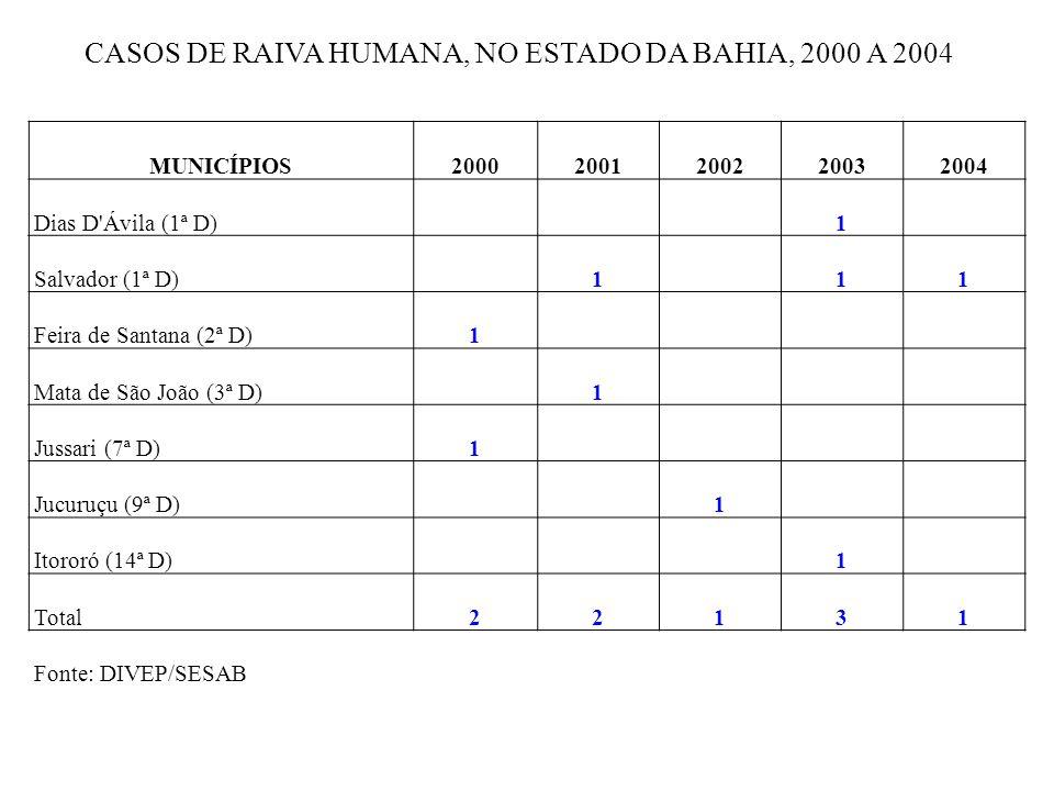MUNICÍPIOS20002001200220032004 Dias D'Ávila (1ª D) 1 Salvador (1ª D) 1 11 Feira de Santana (2ª D)1 Mata de São João (3ª D) 1 Jussari (7ª D)1 Jucuruçu