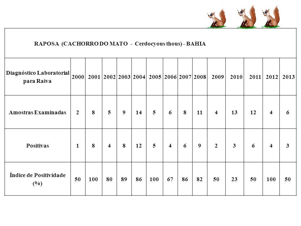 RAPOSA (CACHORRO DO MATO - Cerdocyous thous) - BAHIA Diagnóstico Laboratorial para Raiva 20002001200220032004200520062007200820092010201120122013 Amos