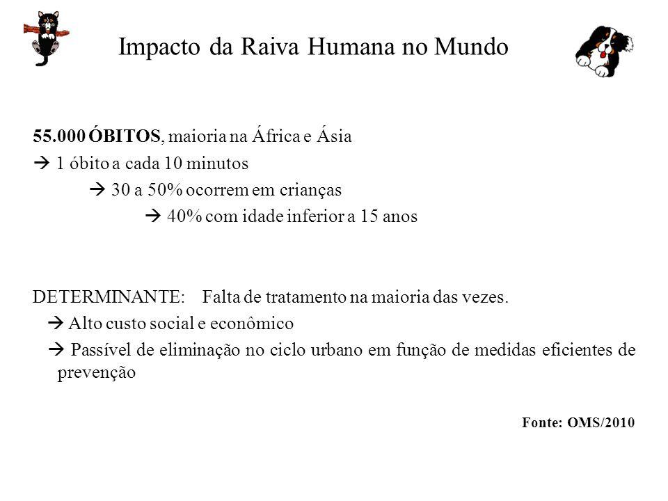 Impacto da Raiva Humana no Mundo 55.000 ÓBITOS, maioria na África e Ásia 1 óbito a cada 10 minutos 30 a 50% ocorrem em crianças 40% com idade inferior
