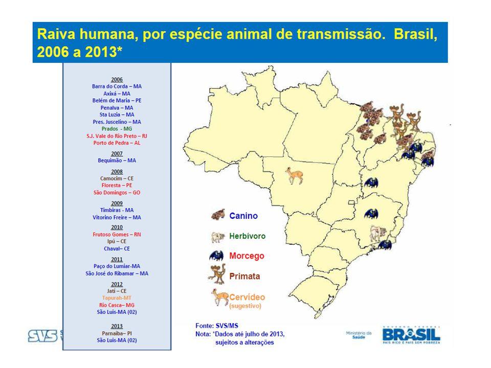 MUNICÍPIOS20002001200220032004 Dias D Ávila (1ª D) 1 Salvador (1ª D) 1 11 Feira de Santana (2ª D)1 Mata de São João (3ª D) 1 Jussari (7ª D)1 Jucuruçu (9ª D) 1 Itororó (14ª D) 1 Total22131 Fonte: DIVEP/SESAB CASOS DE RAIVA HUMANA, NO ESTADO DA BAHIA, 2000 A 2004