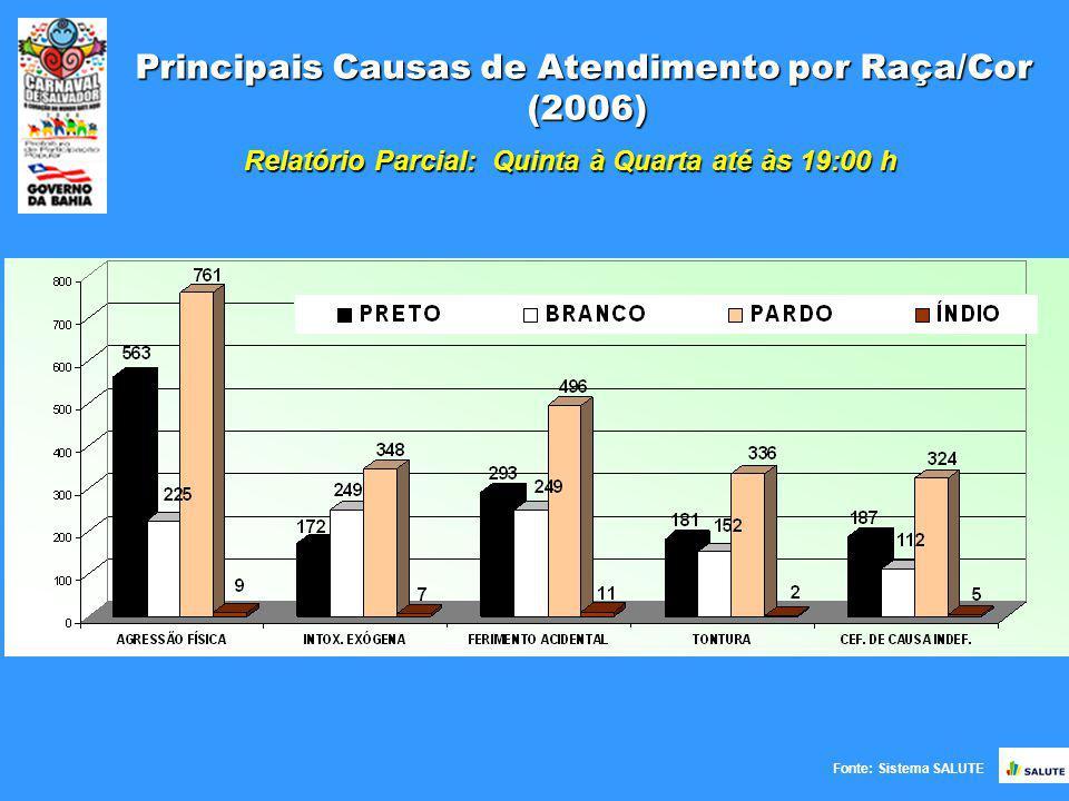 Principais Causas de Atendimento por Raça/Cor (2006) Fonte: Sistema SALUTE Relatório Parcial: Quinta à Quarta até às 19:00 h
