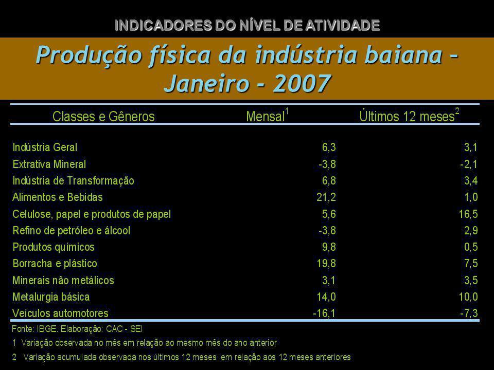 Produção física da indústria baiana – Janeiro - 2007 INDICADORES DO NÍVEL DE ATIVIDADE
