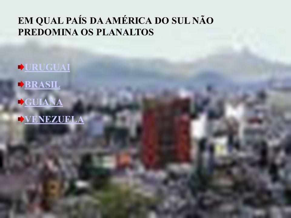 A ATUAÇÃO DAS FRENTES POLARES É MUITO INTENSA NA AMÉRICA CENTRAL AMÉRICA DO SUL AMÉRICA DO NORTE EUROPA