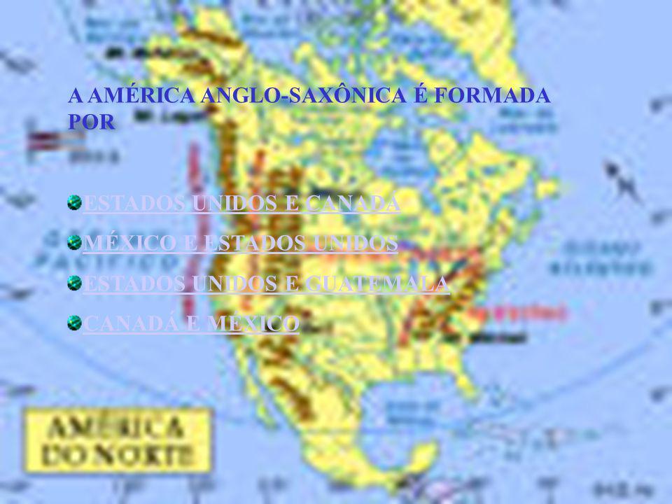 QUAL É O PAÍS MAIS EXTENSO DAS AMÉRICAS E O SEGUNDO MAIOR DO MUNDO ESTADOS UNIDOS CANADÁ BRASIL ARGENTINA