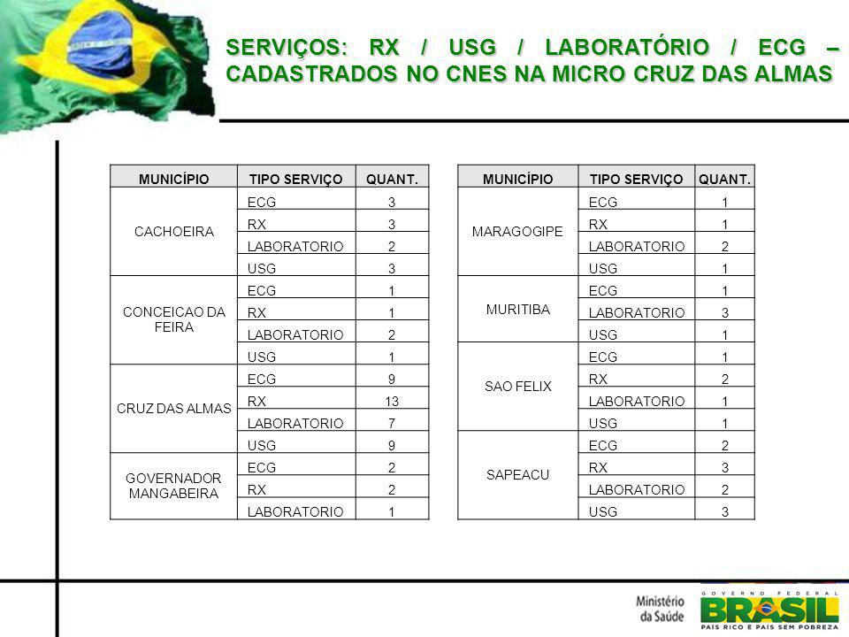 SERVIÇOS: RX / USG / LABORATÓRIO / ECG – CADASTRADOS NO CNES NA MICRO CRUZ DAS ALMAS MUNICÍPIOTIPO SERVIÇOQUANT.