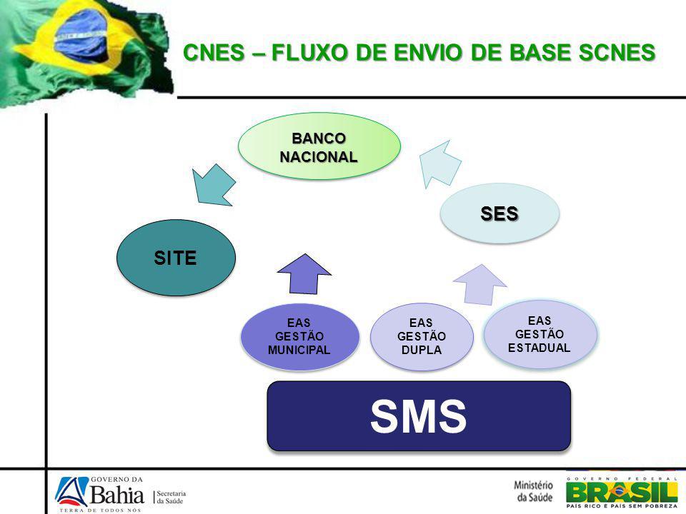 CNES – INFORMAÇÕES CNES SERVIÇO ESPECIALIZADO/ CLASSIFICAÇÃO NIVEL ATENÇÃO/ ATIVIDADE CARACTERIZAÇÃO GESTÃO IDENTIFICAÇÃO / ENDEREÇO ATENDIMENTO PRESTADO/ CONVENIO INSTALAÇÃO FÍSICA EQUIPAMENTOS LEITOS PROFISSIONAIS HABILITAÇÃO