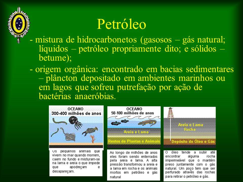 Petróleo - mistura de hidrocarbonetos (gasosos – gás natural; líquidos – petróleo propriamente dito; e sólidos – betume); - origem orgânica: encontrado em bacias sedimentares – plâncton depositado em ambientes marinhos ou em lagos que sofreu putrefação por ação de bactérias anaeróbias.