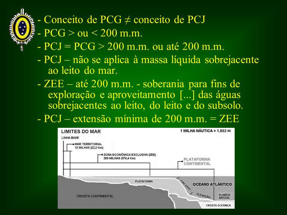 - Conceito de PCG conceito de PCJ - PCG > ou < 200 m.m.