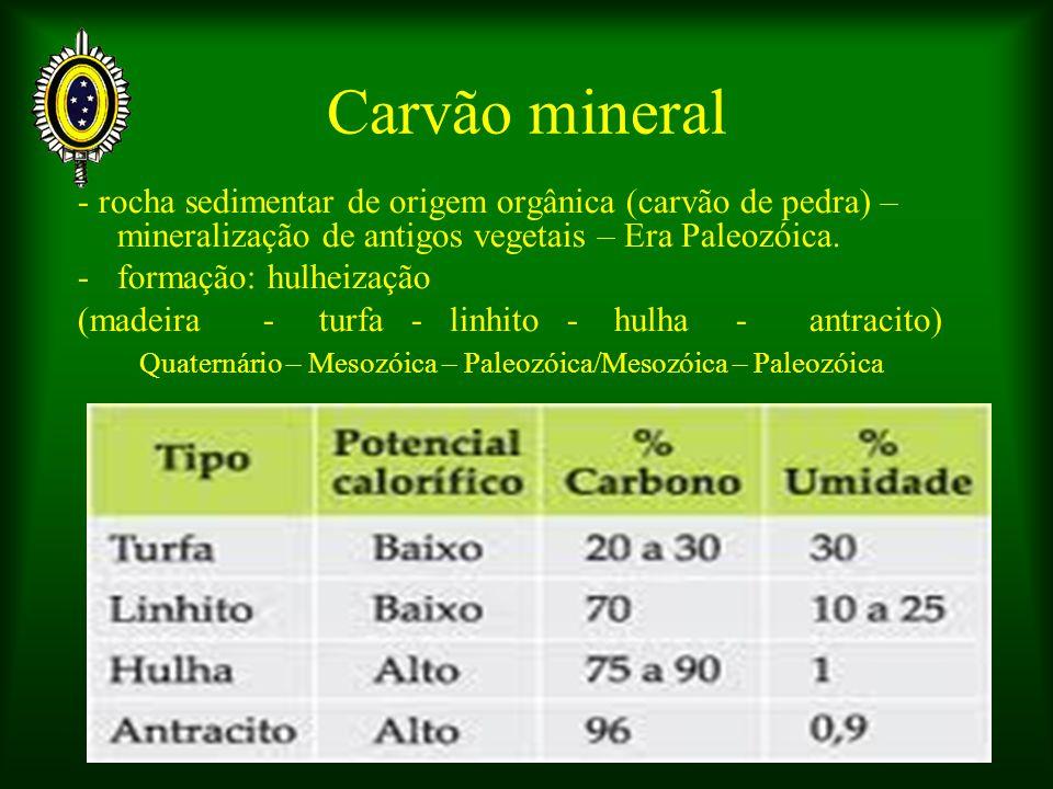 Carvão mineral - rocha sedimentar de origem orgânica (carvão de pedra) – mineralização de antigos vegetais – Era Paleozóica.