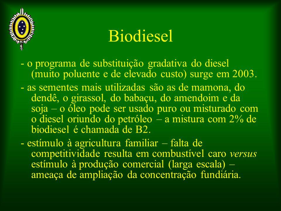 Biodiesel - o programa de substituição gradativa do diesel (muito poluente e de elevado custo) surge em 2003.