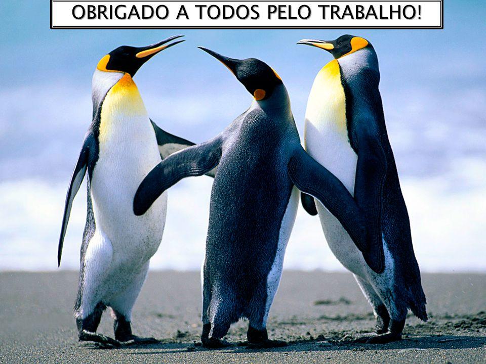 OBRIGADO A TODOS PELO TRABALHO!
