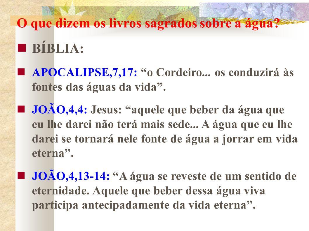 O que dizem os livros sagrados sobre a água? BÍBLIA: APOCALIPSE,7,17: o Cordeiro... os conduzirá às fontes das águas da vida. JOÃO,4,4: Jesus: aquele