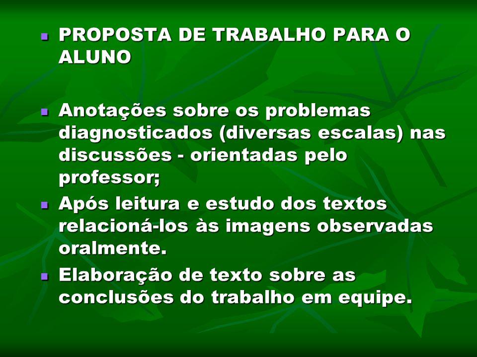 PROPOSTA DE TRABALHO PARA O ALUNO PROPOSTA DE TRABALHO PARA O ALUNO Anotações sobre os problemas diagnosticados (diversas escalas) nas discussões - or