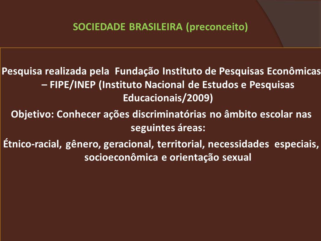 Pesquisa realizada pela Fundação Instituto de Pesquisas Econômicas – FIPE/INEP (Instituto Nacional de Estudos e Pesquisas Educacionais/2009) Objetivo: